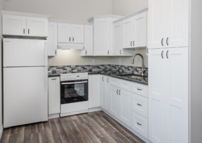 Mother-In-Law Suite Little Tiny House Kitchen